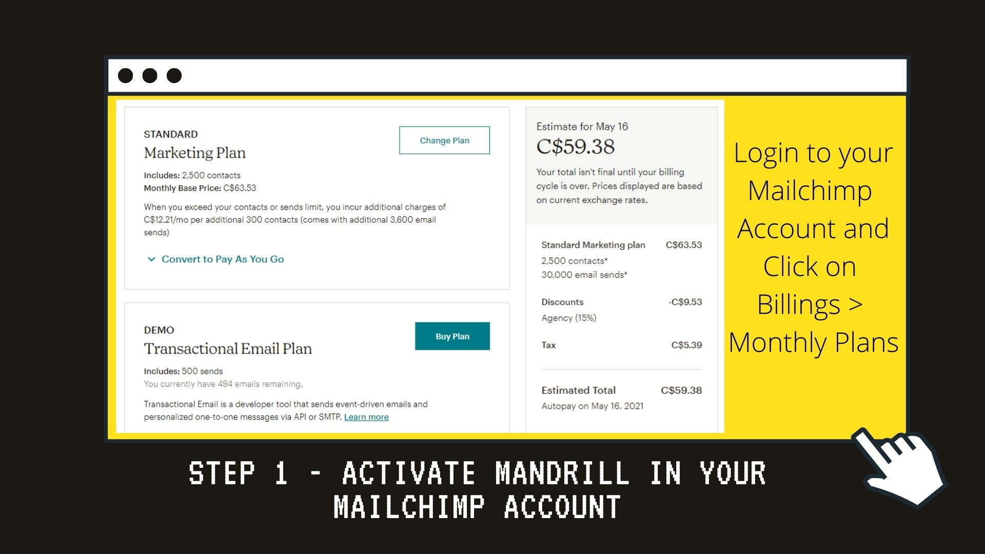 Mailchimp-Training-Program
