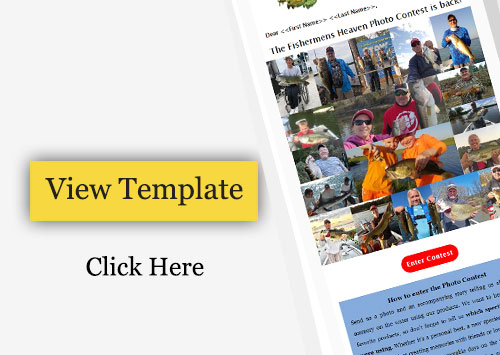 Email Template Design For Contest